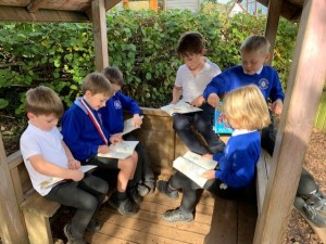 year 2 readers